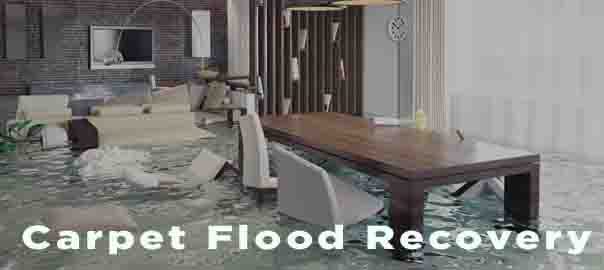 Carpet Flood Recovery